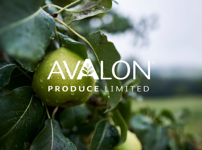 Avalon branded pear image